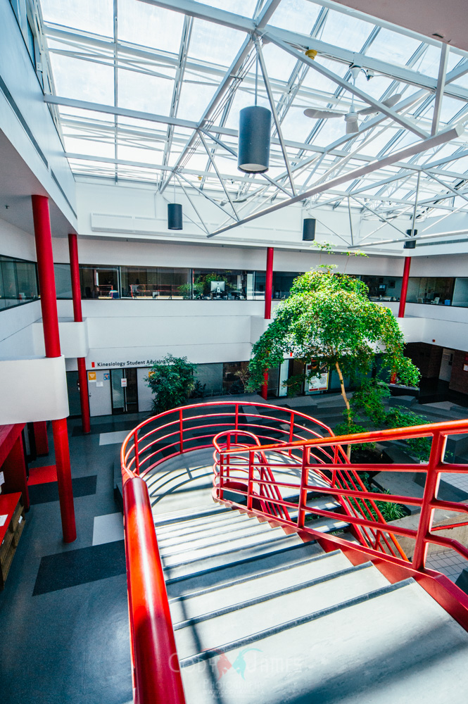 Calgary Renovation Company_-16